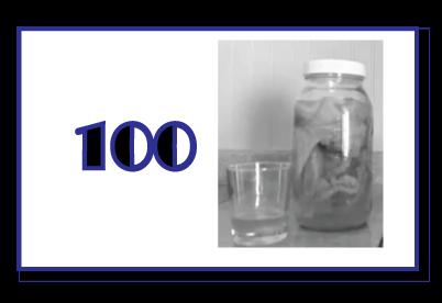 Tina_C_Davidson_100_Bottles_Kombucha